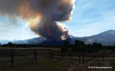 The Roaring Lion Fire - Home Montana