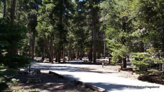 Deserted Camp
