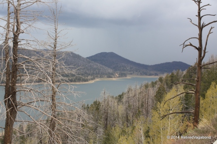 Navajo Lake, Utah - Created because of the Lava Flows