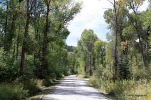 Walking around the campground