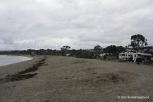 Doheny State Beach - Rainy Day