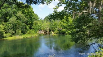 Savannah River
