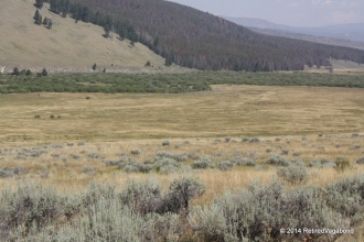 Nez Perce Camp in the center. Their horses were on the hills to the left