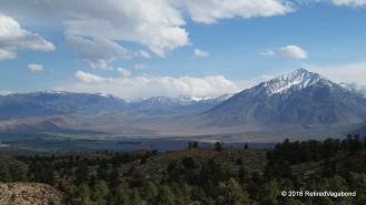 White Mountains Ca