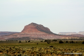 Visible from highway 89