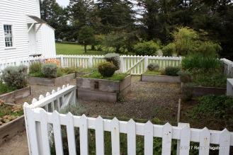 Fort Humbolt Garden - Medical Herbs