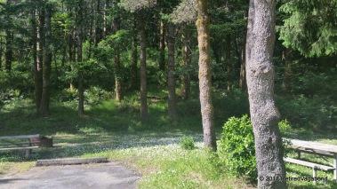 Camp Humbug Mountain State Park