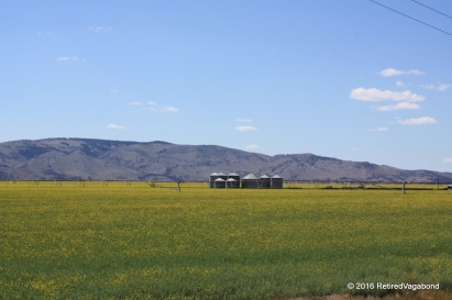 Rich farming land all around the valley