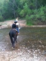 Aiden Horseback Deadhorse