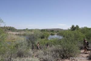 Upper Salt Creek River Hike