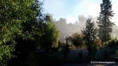 Fog over the Snake River